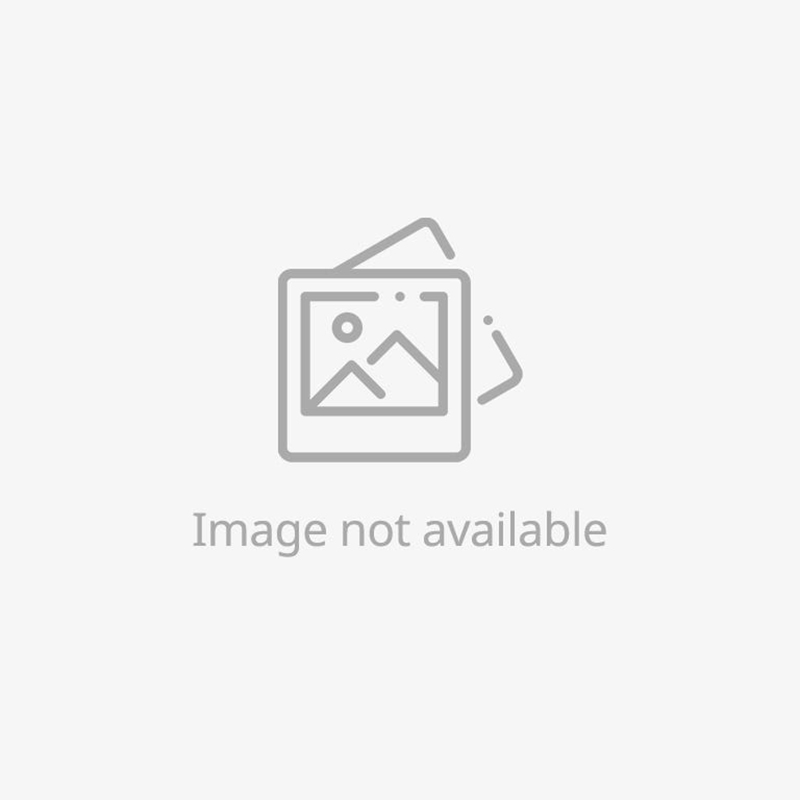 Classic Black South Sea Cultured Pearl and Diamond Earrings - Platinum