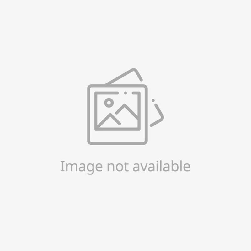 Classic Black South Sea Cultured Pearl and Diamond Earrings - Platinum